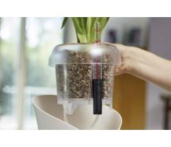 Які переваги вирощування рослин в Lechuza-Pon?