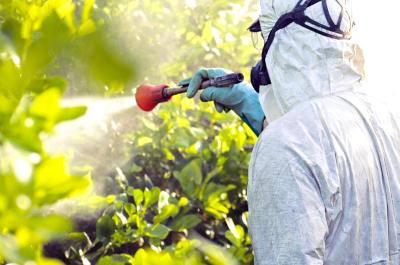 Що впливає на ефективність пестицидів?