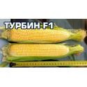 Насіння кукурудзи Турбін F1, 20 шт