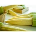 Насіння цукрової кукурудзи Мінікорн, 20 г