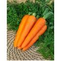 Насіння моркви Вітамінна 6, 2 г