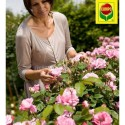 Добриво для троянд, 1 кг, Compo