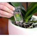 Добриво для орхідей, 5*30 мл, Compo
