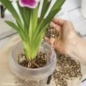 Субстрат для орхідей LECHUZA ORCHIDPON, 3 л